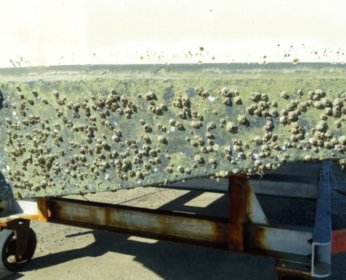 Learn about how to remove antifouling safely